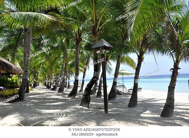 Philippines, Panglao island, South Palm hotel