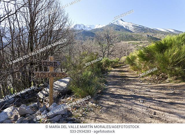 The Cabezos road in the Sierra de Gredos. Avila. Spain
