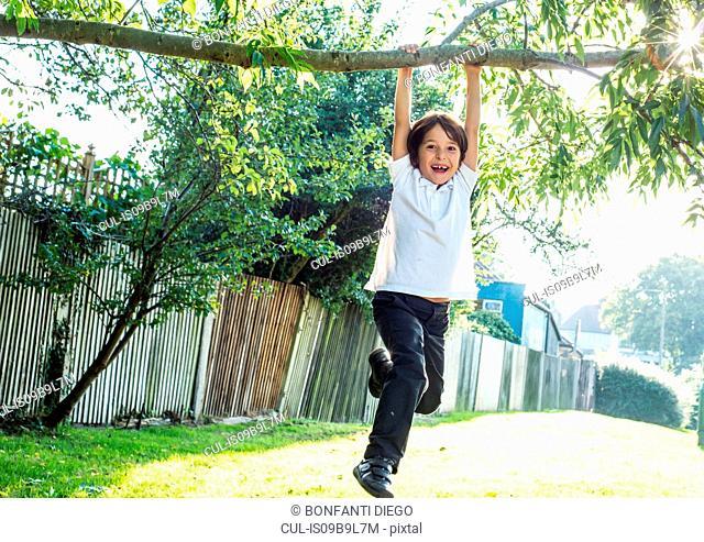 Boy having fun swinging on tree branch