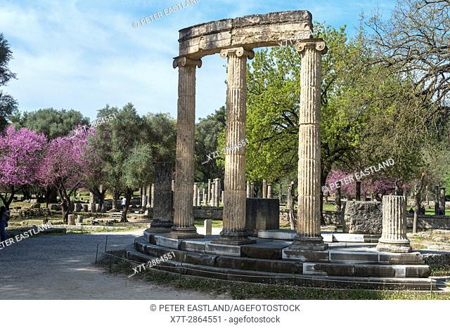 The philippeion at Olympia at springtime with the judas trees in bloom. Ancient Olympia, Peloponnese, Greece