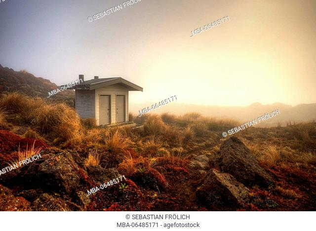 A toilet small house in foggy Nowhere