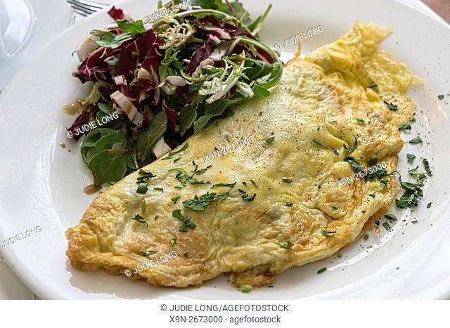 Omelette Garnished with Fine Herbs and Mixed Salad, Served on a White Plate