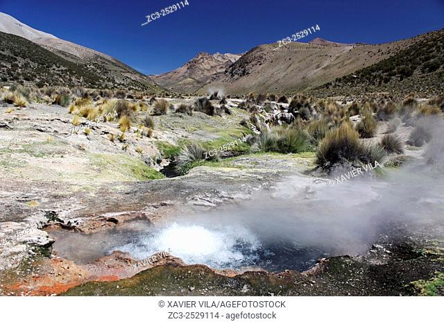 Geyser in the National park of Sajama, Altiplano, Bolivia