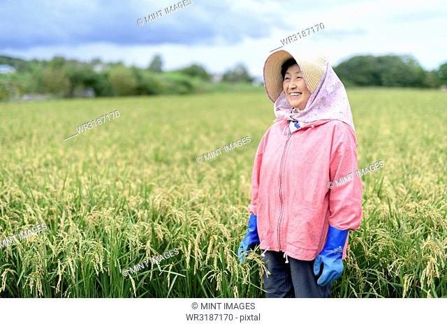 Smiling woman wearing straw hat and pink jacket and blue rubber gloves standing in a rice field