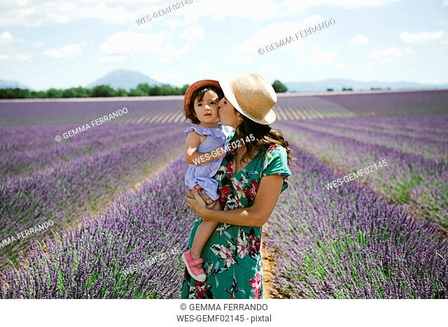 France, Provence, Valensole plateau, Mother kissing daughter in lavender fields in the summer