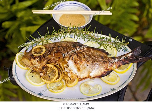 Barbecue scene, Whole fish garnished with lemon, fresh off the grill