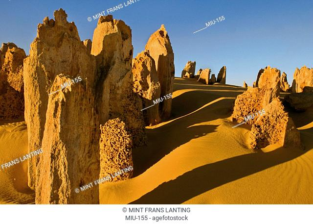 Limestone pinnacles, Nambung National Park, Western Australia