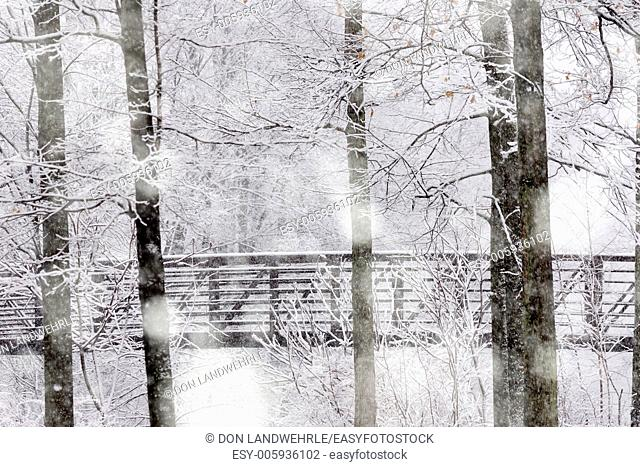 Snow falling in a forrest and a walking bridge, Stowe, Vermont, USA