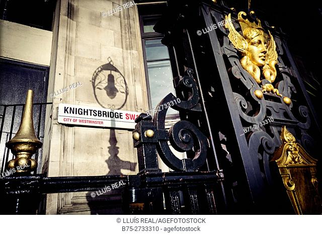 Iron gate with gilded face, lamppost shadow on wall. Knightsbridge SW1, City de Westminster, London, England