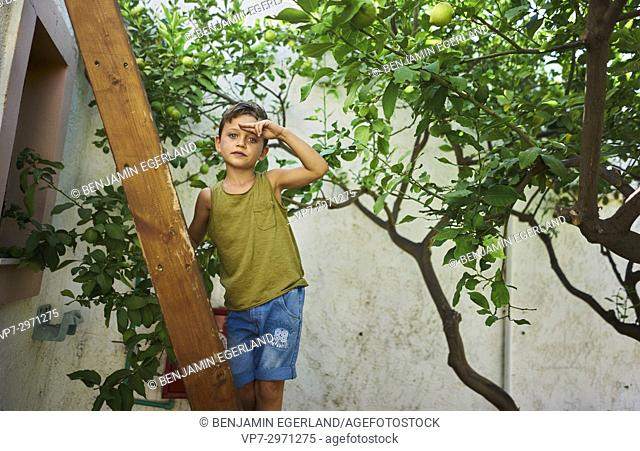 confident young boy standing on ladder in garden. Australian ethnicity