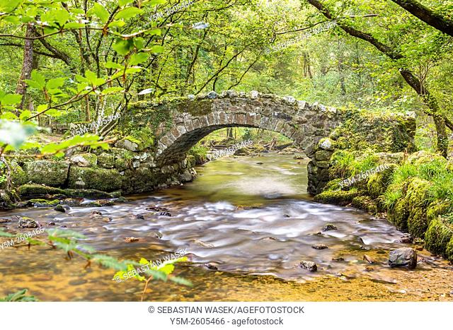 Hisley Bridge crossing the River Bovey, Dartmoor National Park, Lustleigh, Devon, England, United Kingdom, Europe