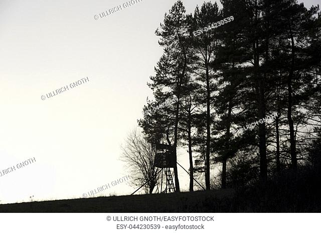 Hunting seat on the edge of the forest by twilight