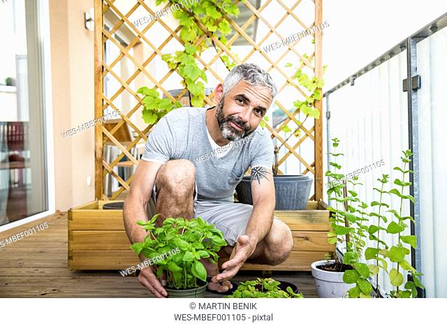 Portrait of smiling man gardening on his balcony