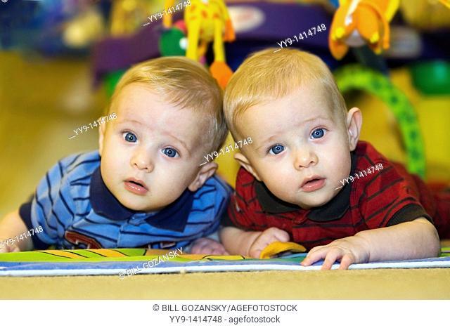 Portrait of twin baby boys - Hollywood, Florida USA