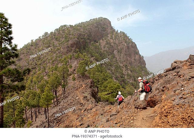 Pico Bejenado, La Palma, Canary Islands, Spain, Europe