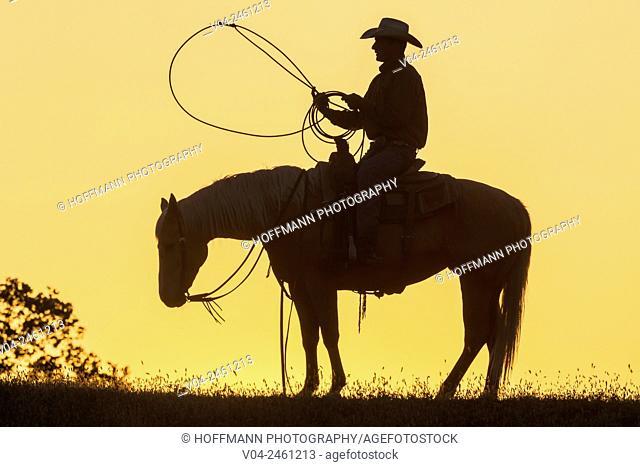 Single wrangler (cowboy) on horse at sunset, California, USA