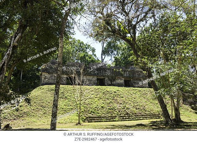Plaza of the Seven Temples, Mundo Perdido (Lost World) Complex, Tikal, Guatemala, Central America