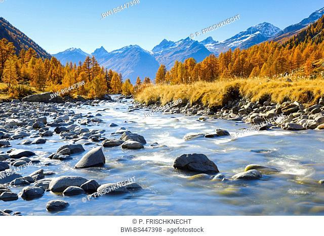 Lonza river in autumnal Loetschental valley, Switzerland, Valais