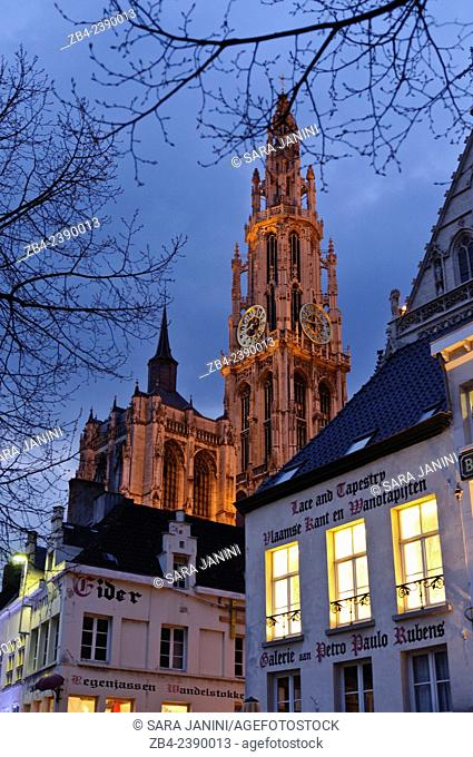 Cathedral of Our Lady by night from Green Square, Antwerp, Belgium, Europe