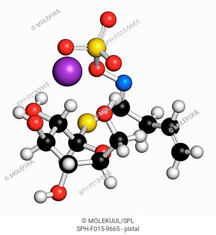 Sinigrin glucosinolate molecule. Present in some cruciferous vegetables (Brussels sprouts, broccoli, black mustard, etc). 3D rendering