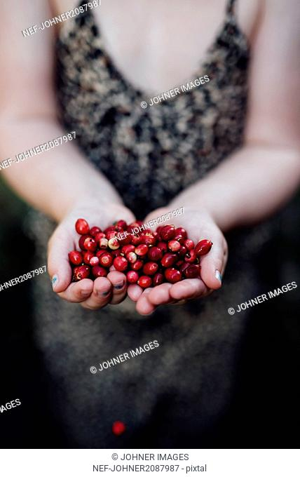 Childs hands with berries