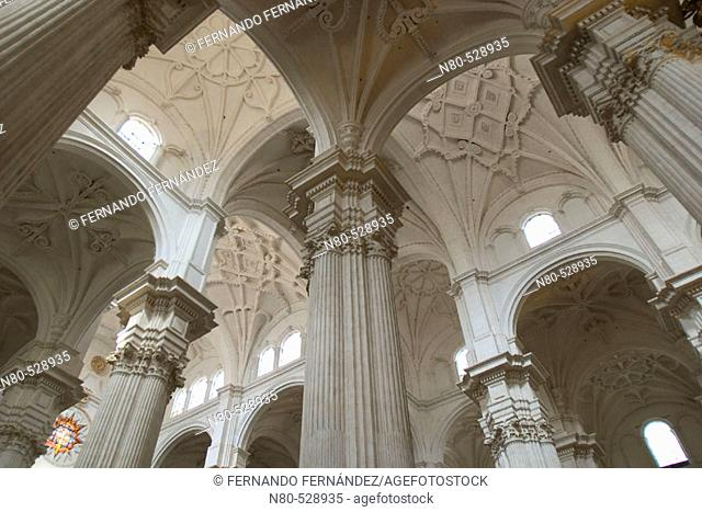 Pillars in the cathedral, Granada. Andalusia, Spain