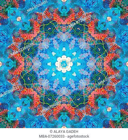 Photographic flower mandala, blue, turquoise, red