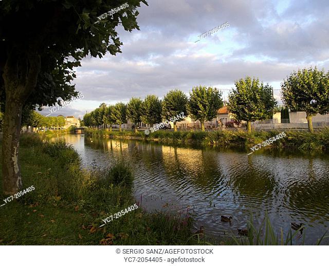 La Seudre river, Charente-Maritime