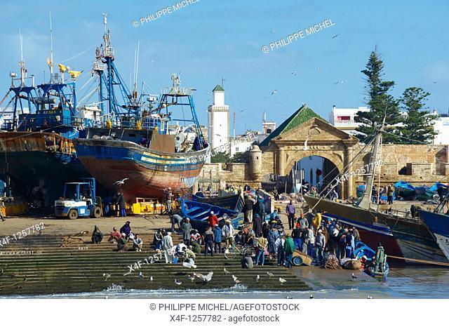 Morocco, Medina of Essaouira, Atlantic coast, Unesco world heritage, fishing harbour