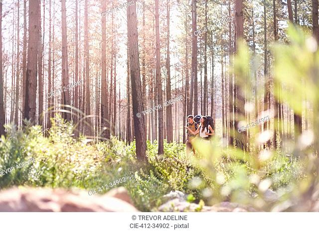 Young couple hiking in sunny woods