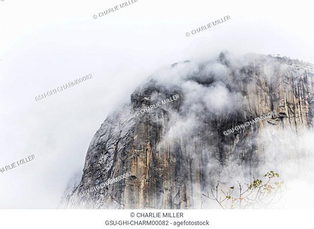 Fog Blanketing El Capitan Rock Formation, Yosemite National Park, California, USA