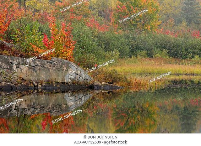 Autumn reflections in Fairbank Creek. Greater Sudbury, Ontario, Canada