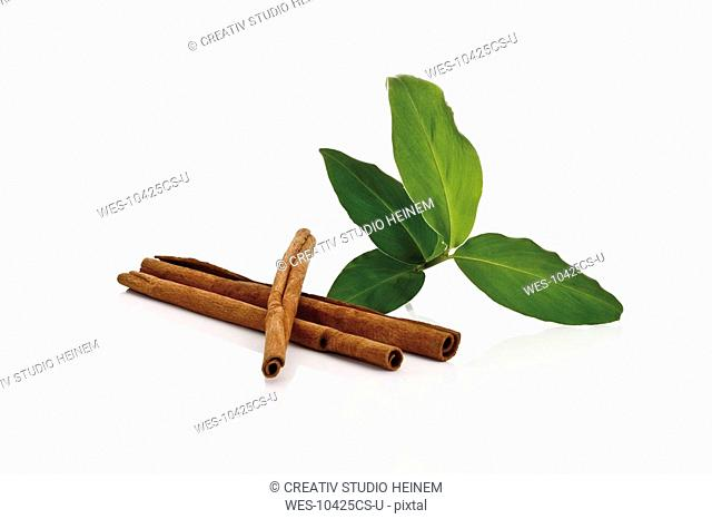 Cinnamon sticks and cinnamon leaves Cinnnamomum