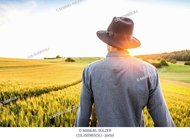 Mid adult man, standing in field, rear view, Neulingen, Baden-W³rttemberg, Germany