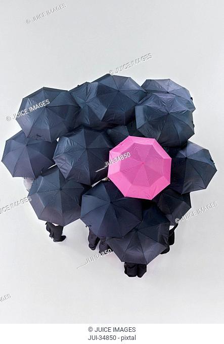 Pink umbrella among group of black umbrellas
