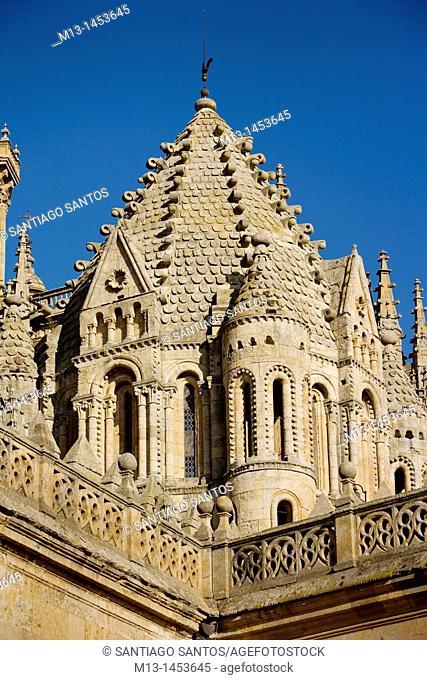 Torre del Gallo, Old Cathedral of Salamanca. Castilla y León. Spain