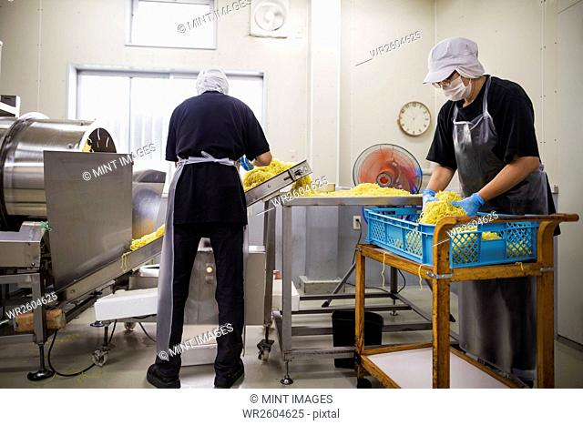Workers in aprons and hats collecting freshly cut noodles from the conveyor belt to package and sell