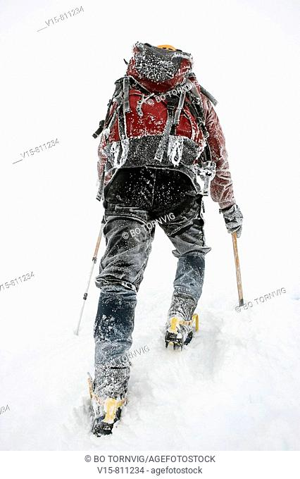 Mountaineer climbing snow covered mountain in whiteout