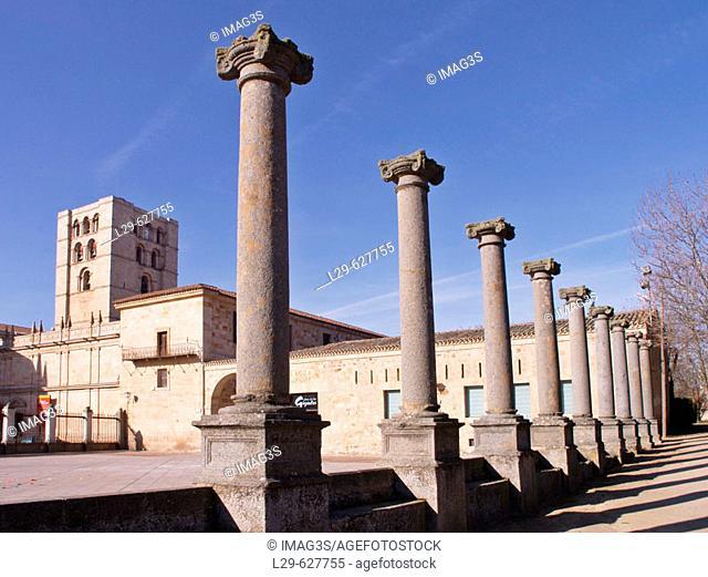 Cathedral seen from Jardín del Castillo, Zamora. Spain