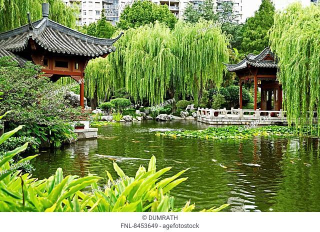 Chinese garden, Sydney, Australia