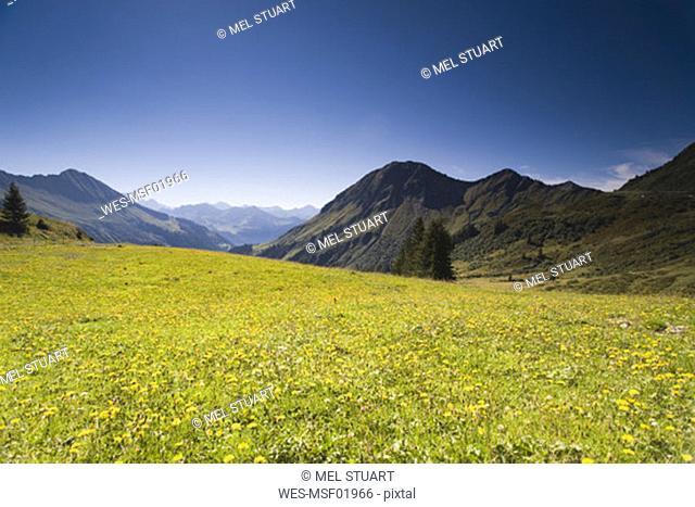 Austria, alps, Voralberg