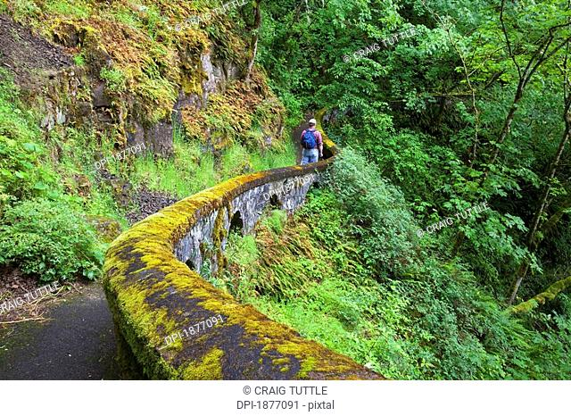 oregon, united states of america, a hiker along sheppard's del in columbia river gorge national scenic area