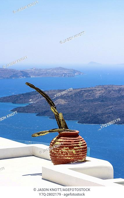 Rooftop cactus in a pot in Firostefani, Santorini, Cyclades, Greece