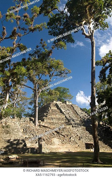 West Court, Mound 16, Copan archaeological park, Copan Ruinas, Honduras