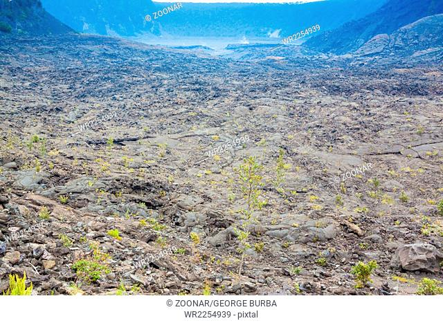 Cracked barren bottom of Kilauea Crater in Hawaii Volcanoes National Park