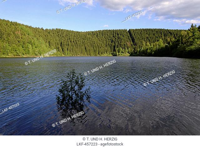 Oker reservoir, Harz, Lower-Saxony, Germany, Europe
