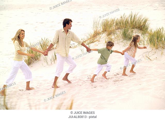 Family walking hand in hand on beach