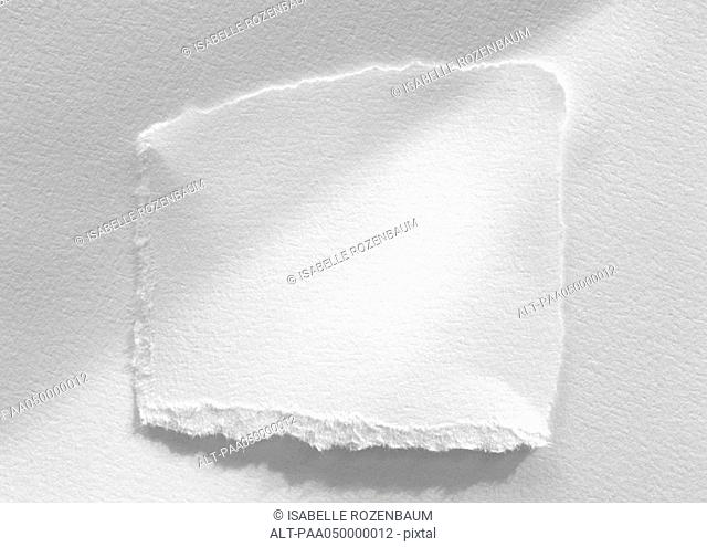 Piece of white paper with torn edges, close-up, white background