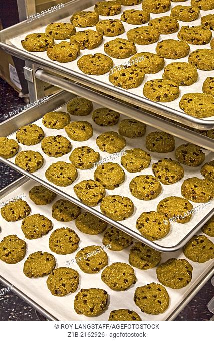 Gluten-free cookies arrayed on baking trays