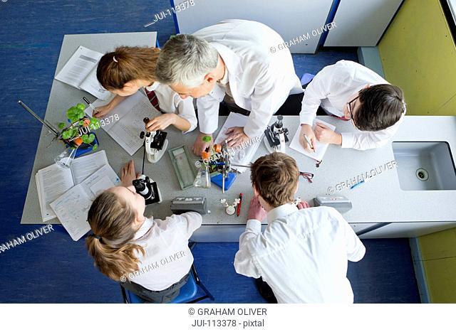 Biology teacher teaching high school students conducting scientific experiment
